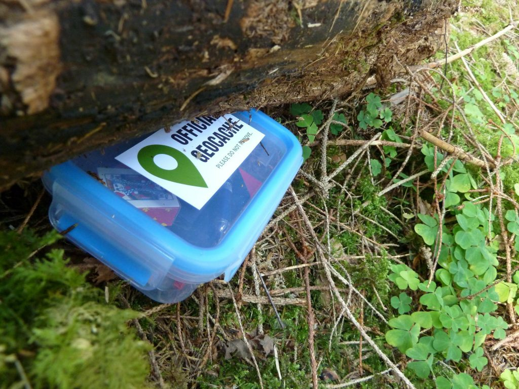Geocaching Summer Activity For ADHD Kids