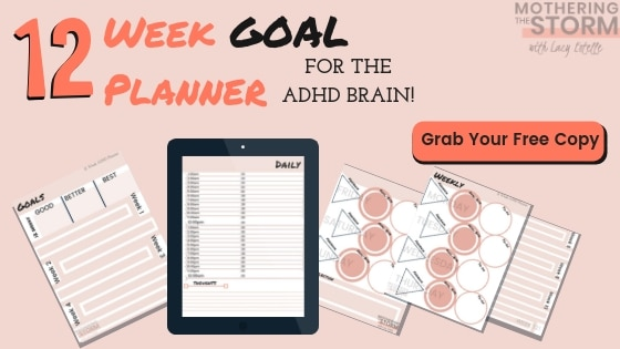 ADHD Goal Planner 12 Week ADHD planner